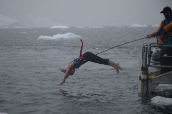 polar dive